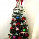 クリスマスまで1ヶ月!