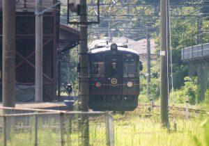京都丹後鉄道ー黒松